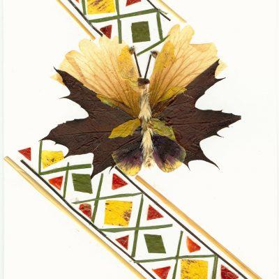 card 2005 6