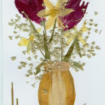 springcard 2005
